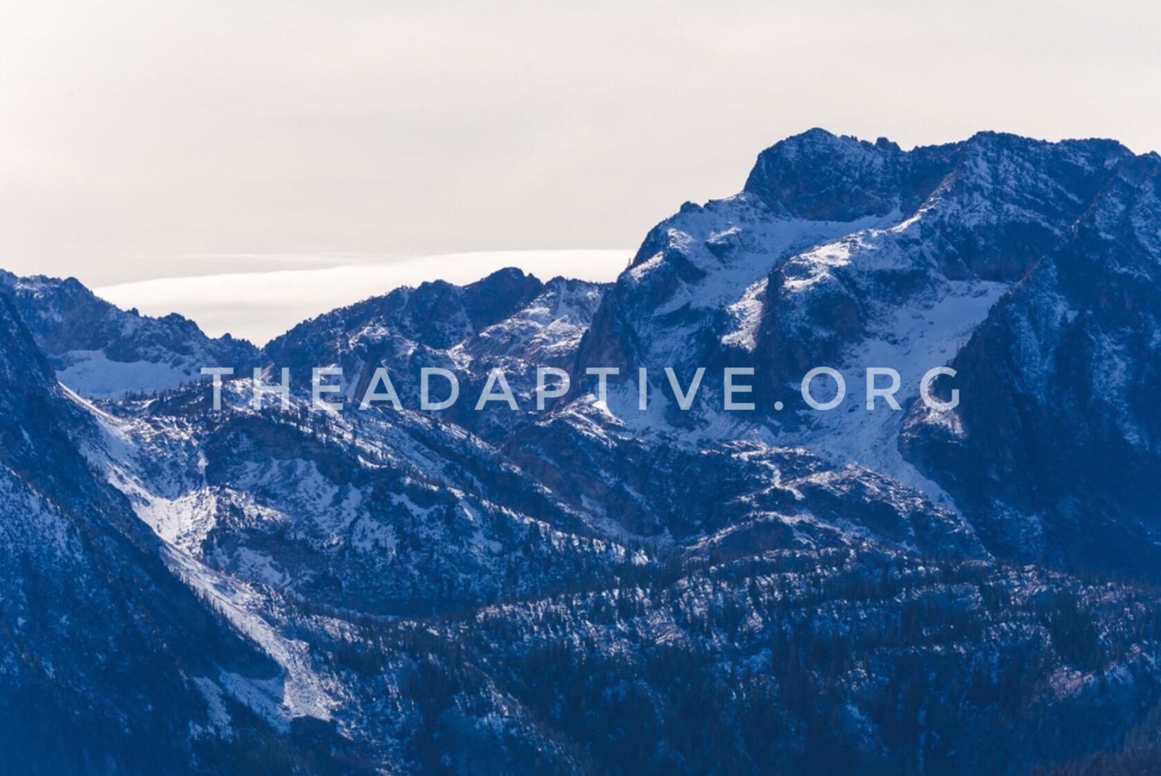 theadaptive.org